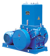 vacuum pumps china